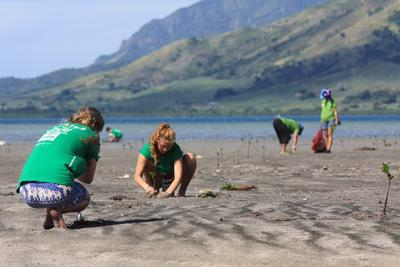 Two students plant mangroves in Fiji as part of their volunteer trip to Fiji