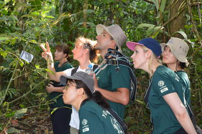 Projects Abroad Conservation volunteers spot a bird species in Peru