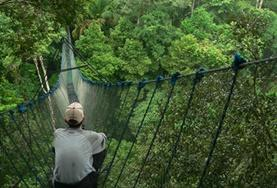 A Rainforest Conservation volunteer overlooks a placement in Peru