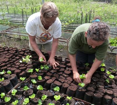 Projects Abroad volunteers on the Conservation & Community placement in the Galapagos, Ecuador