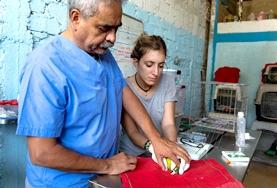 A volunteer Vet assist in a procedure on a bird at a placement in Peru