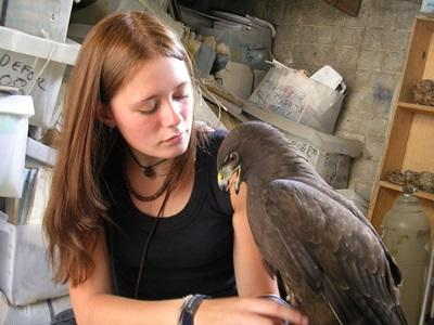 Veterinary Work Experience Abroad